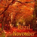 Hazel November