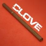 clove_2