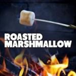 roasting-marshmallows_2